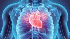 بیماریهای قلبی و عروقی، عامل ۴۳ درصد مرگها در خوزستان!